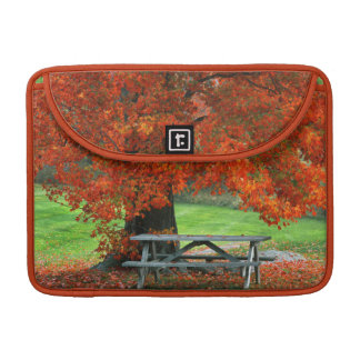 Los E.E.U.U., Nueva York, parque del oeste. Banco Funda Para Macbook Pro