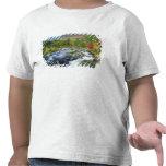 Los E.E.U.U., Nueva York. Una cascada en el Adiron Camiseta