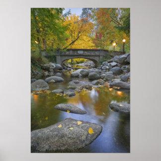 Los E.E.U.U., Oregon, Ashland, parque litia. Otoño Poster