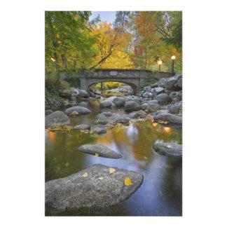 Los E E U U Oregon Ashland parque litia Otoño Fotografías