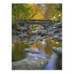 Los E.E.U.U., Oregon, Ashland, parque litia. Otoño Tarjeta Postal