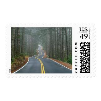 Los E.E.U.U., Oregon, bosque del Estado 2 de Sello