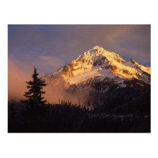 Los E.E.U.U., Oregon, bosque del Estado de la capi Tarjeta Postal