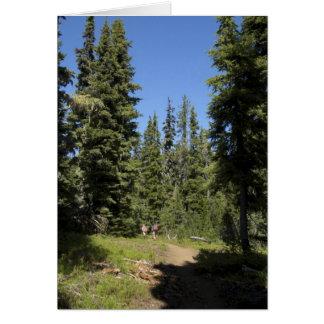 Los E.E.U.U., Oregon, bosque del Estado de Willame Felicitacion