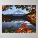 Los E.E.U.U., Oregon, bosque nacional de la capill Impresiones