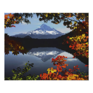 Los E.E.U.U., Oregon, bosque nacional de la capill Póster