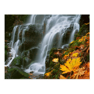Los E.E.U.U., Oregon, caídas de hadas, garganta Postales