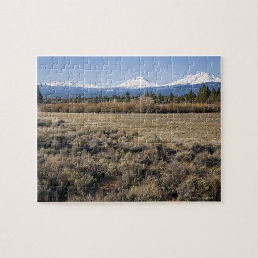 Los E.E.U.U., Oregon, campo con la cascada nevada Rompecabeza Con Fotos
