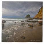 Los E.E.U.U., Oregon, condado de Tillmook, playa c Azulejo Cuadrado Grande