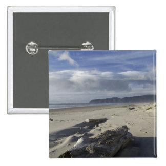 Los E.E.U.U., Oregon, dunas de arena y océano, ciu Pin Cuadrado
