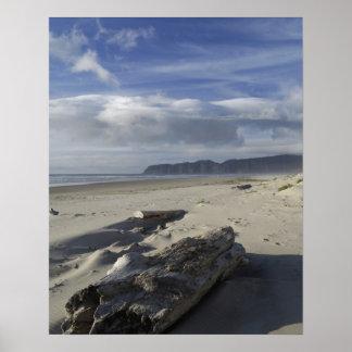 Los E.E.U.U., Oregon, dunas de arena y océano, ciu Póster