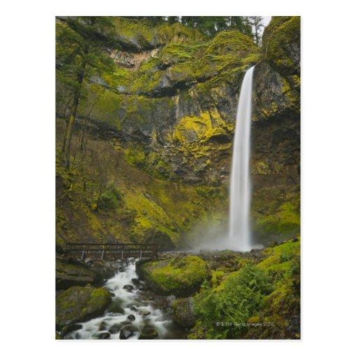 Los E.E.U.U., Oregon, el condado de Multnomah, caí Tarjeta Postal