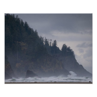 Los E.E.U.U., Oregon, el condado de Tillamook, bos Posters