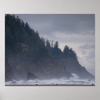 Los E.E.U.U., Oregon, el condado de Tillamook, bos Póster