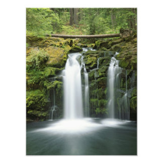 Los E E U U Oregon gama de la cascada nacional Arte Con Fotos