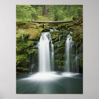 Los E.E.U.U., Oregon, gama de la cascada, nacional Póster