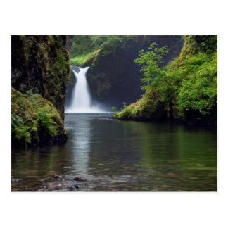 Los E.E.U.U., Oregon, garganta 5 del río Columbia Tarjetas Postales