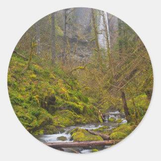 Los E.E.U.U., Oregon, garganta de Columbia Pegatina Redonda