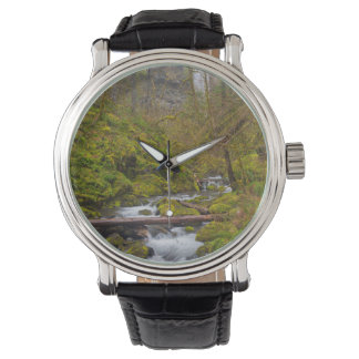 Los E.E.U.U., Oregon, garganta de Columbia Reloj De Mano