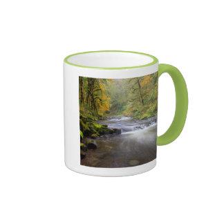 Los E.E.U.U., Oregon, garganta del río Columbia, Taza De Café