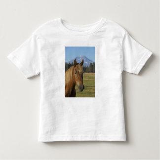 Los E.E.U.U., Oregon, hermanas, opinión tres Camisas