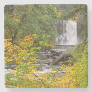 Los E.E.U.U., Oregon, plata caen el parque de Posavasos De Piedra