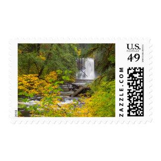 Los E.E.U.U., Oregon, plata caen el parque de Envio