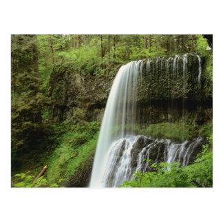 Los E.E.U.U., Oregon, plata caen parque de estado. Tarjetas Postales
