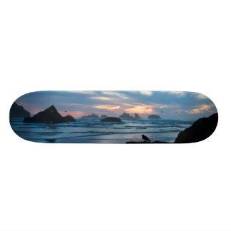 Los E.E.U.U., Oregon, playa de Bandon. Gaviota en Tabla De Skate