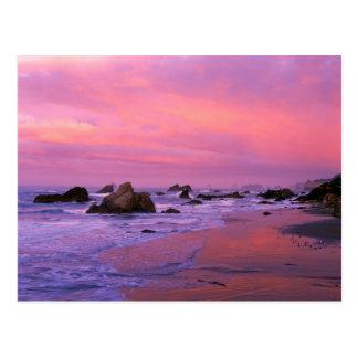 Los E.E.U.U., Oregon, playa de estado de Harris, B Tarjeta Postal