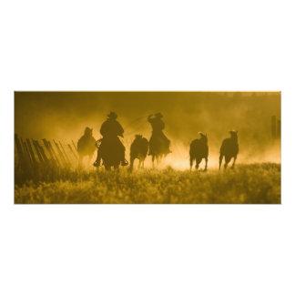 Los E.E.U.U., Oregon, Seneca, rancho de Ponderosa. Fotografía