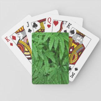 Los E.E.U.U., Oregon, Silverton. Helechos de Cartas De Póquer