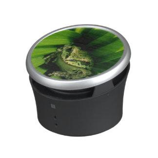 Los E.E.U.U., Oregon, Treefrog en Hellebore falso Altavoz Con Bluetooth