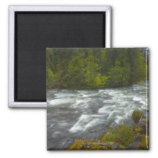 Los E.E.U.U., Oregon, vista escénica del río de Imán Cuadrado