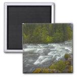 Los E.E.U.U., Oregon, vista escénica del río de Sa Imán