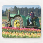 Los E.E.U.U., Oregon, Woodburn, tulipán de madera  Tapetes De Ratón