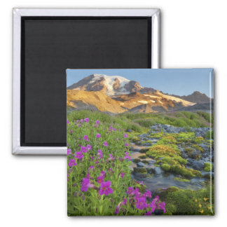 Los E E U U parque nacional del Monte Rainier W Imanes De Nevera
