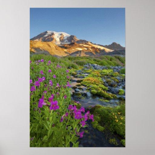 Los E.E.U.U., parque nacional del Monte Rainier, W Poster