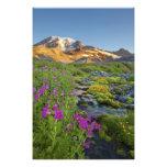 Los E.E.U.U., parque nacional del Monte Rainier, W Impresiones Fotográficas