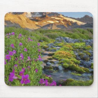 Los E E U U parque nacional del Monte Rainier W Alfombrilla De Raton