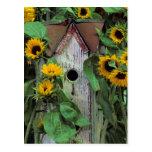 Los E.E.U.U., Pennsylvania. Birdhouse y jardín Postal