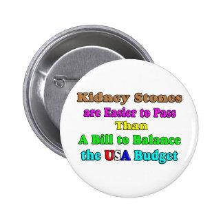 Los E.E.U.U. presupuestan 2011 Pin Redondo De 2 Pulgadas