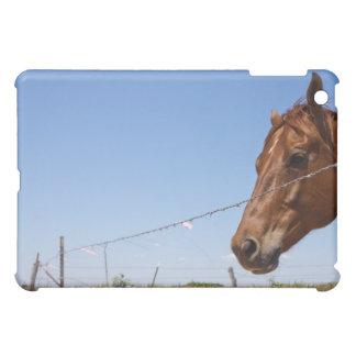 Los E.E.U.U., Tejas, Chillicothe, caballo se coloc