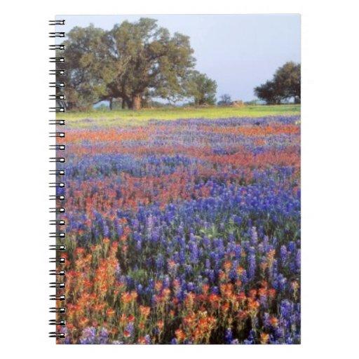Los E.E.U.U., Tejas, Llano. Bluebonnets y redbonne Libro De Apuntes Con Espiral
