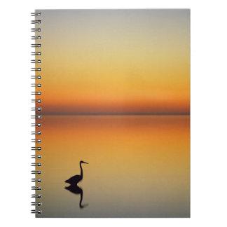Los E.E.U.U., Tejas, puerto Aransas, garza de gran Note Book
