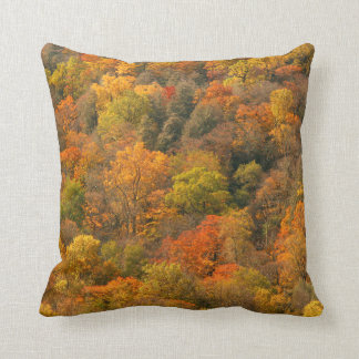 Los E.E.U.U., Tennessee. Follaje de otoño 2 Almohada