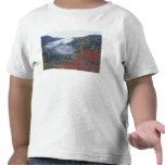 Los E.E.U.U., Tennessee, grandes montañas de Camiseta