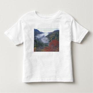 Los E.E.U.U., Tennessee, grandes montañas de Polera