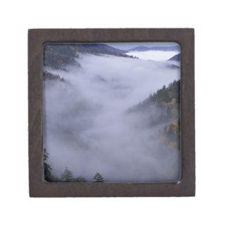 Los E.E.U.U., Tennessee. Grandes montañas de Smoke Caja De Recuerdo De Calidad