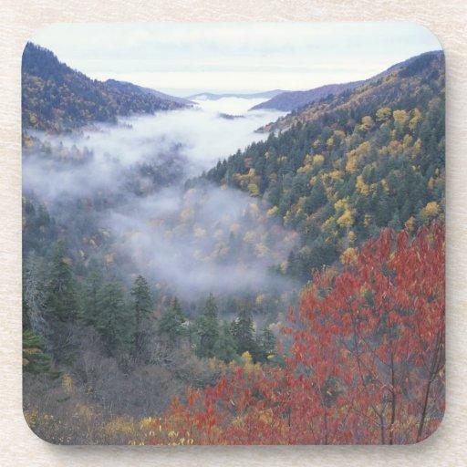 Los E.E.U.U., Tennessee, grandes montañas de Smoke Posavaso